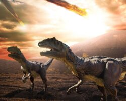 The one vital lesson hoteliers can learn from the dinosaur extinction.